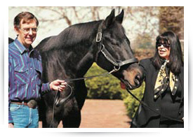 Seattle Slew Spinal Cord Research Fund